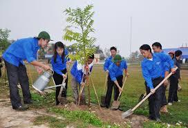 Tổ chức Tết trồng cây Xuân Bính Thân 2016