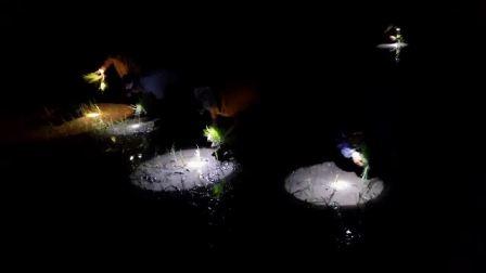 Thanh Hóa: Nắng nóng kéo dài, người dân mang đèn pin đi cấy đêm