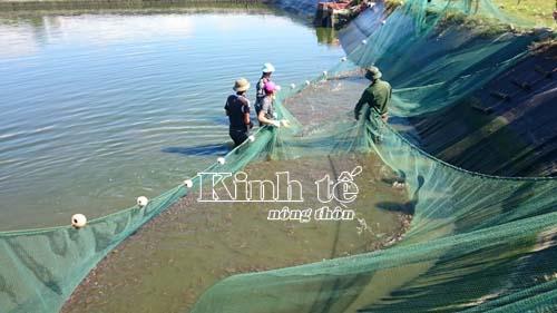 Đoàn kết là chìa khóa thành công trong XDNTM ở Quảng Thắng