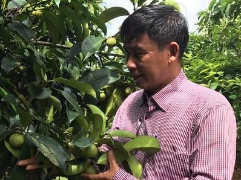 Kinh tế trang trại góp phần nâng cao vị thế sản phẩm nông nghiệp