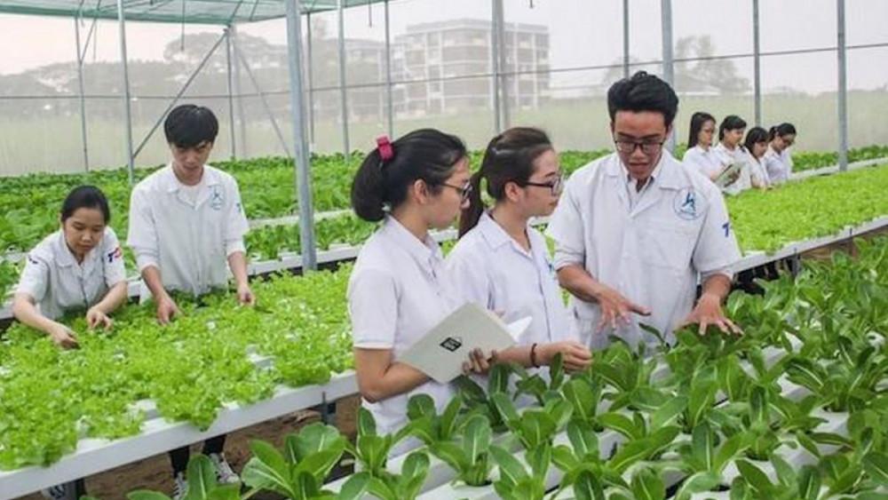 Đào tạo nguồn nhân lực lao động nông thôn cần gắn với tái cơ cấu ngành nông nghiệp